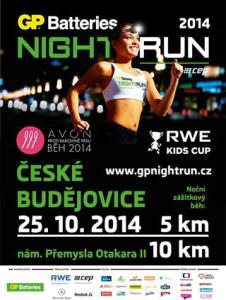 preview2014_Night-run